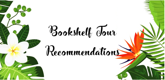 Bokshelftourrecommendations_bookrecs_feature